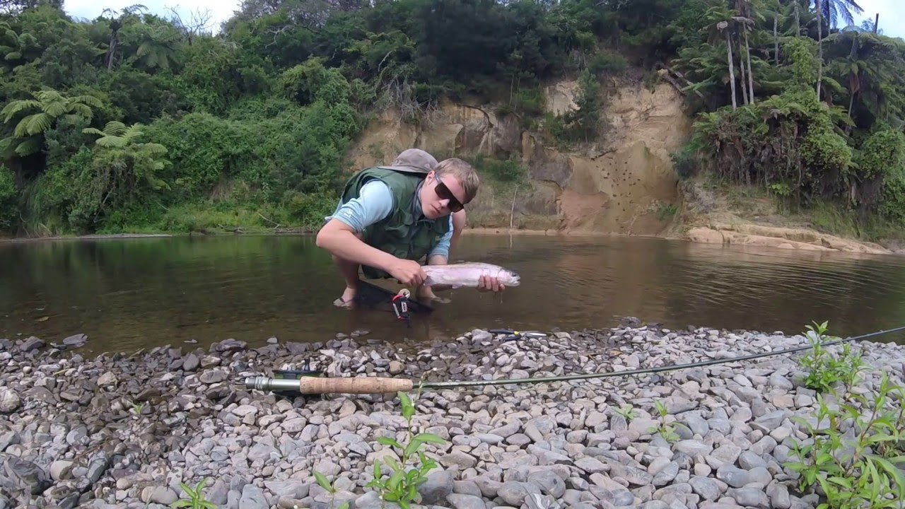 waikato fly fishing youtube