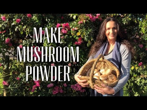 DRYING MUSHROOMS - Making Mushroom Powder