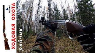 Охота на боровую дичь в Сибири. Один день и два охотника.