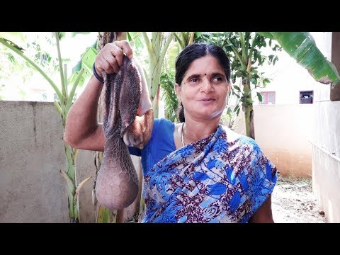 My Village Mom Cleaning Goat Boti | How To Clean Goat Boti Village Style In Easy Way
