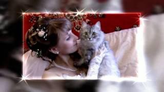 Сборы невесты Фрагмент свадебного фильма 2011г  Мария