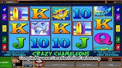 Crazy chameleons Slots