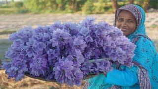 Unique Recipe That's Amazing You Have Never Seen Before Kochori Fuler Pakaora Water Hyacinth Flower