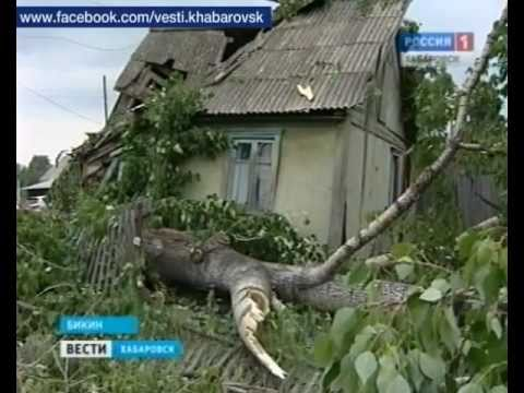 Вести-Хабаровск. Последствия урагана в Бикине