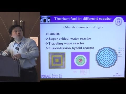 Yu Ganglin - Thorium Fuel in Different Reactor Designs @ ThE