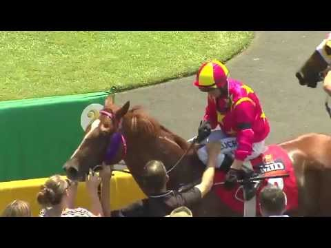 Melbourne Cup Raceday - Tuesday 3rd November 2015 at Cannon Park , Cairns, Queensland