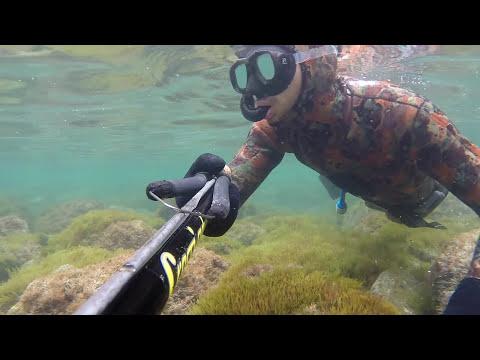 pesca sub: polpi giganti HD