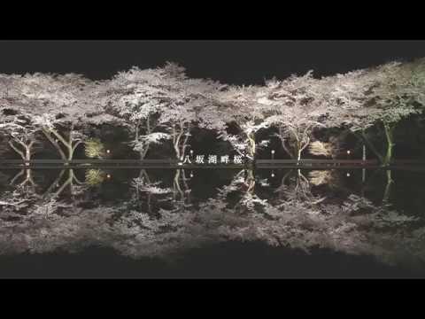 飛騨国 下呂の旅 春