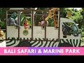 Visiting Bali Safari & Marine Park || Episode 16