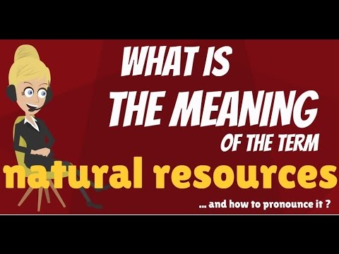 What are NATURAL RESOURCES? What do NATURAL RESOURCES mean? NATURAL RESOURCES meaning