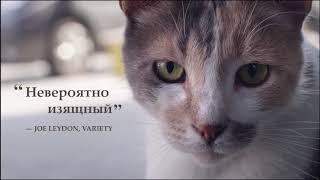 Город кошек (2016) — Русский трейлер