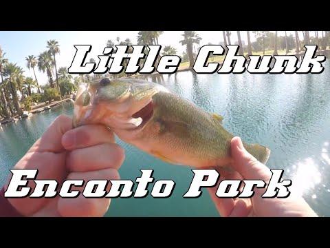 Encanto Park Bass Fishing (Phoenix, Arizona)