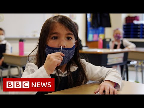 COVID-19 and the schools crisis - BBC News