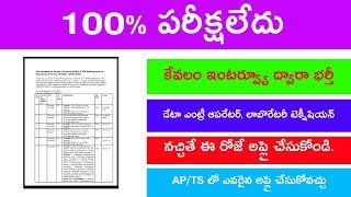 Interview jobs 2019 || data entry operator jobs 2019 || ap and ts jobs in telugu