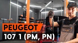 Монтаж на заден и преден Държач Спирачен Апарат на PEUGEOT 107: видео наръчници