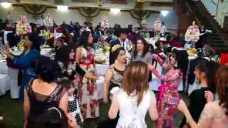 Video kran proekt TUY САМАРКАНД свадьба