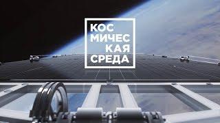 Космическая среда № 214