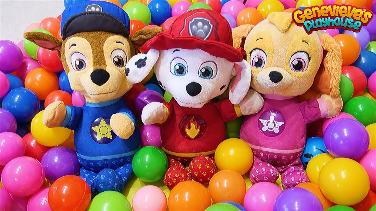 Download Paw Patrol Baby Pups Home Alone and get a New House Learning Videos for Kids!