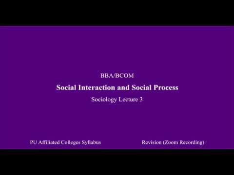 Social Interaction and Social Process: Sociology Lecture 3