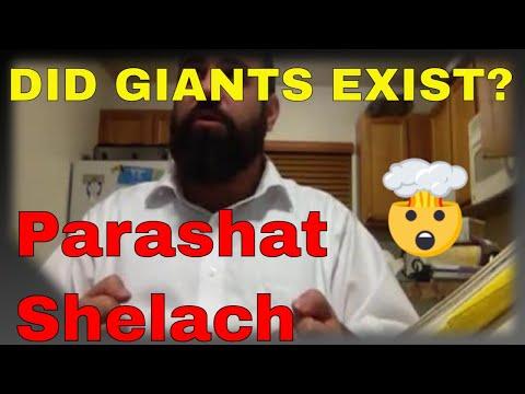 Shiur Torah #31 Parashat Shelach, Giant People, Giant Lies, Giant Punishments Throughout History