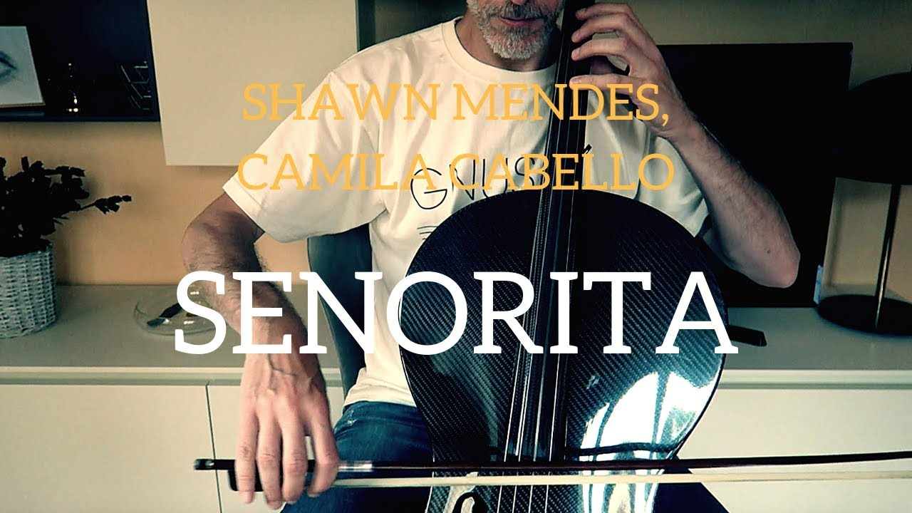 Shawn Mendes, Camila Cabello - Señorita for cello and piano (COVER)