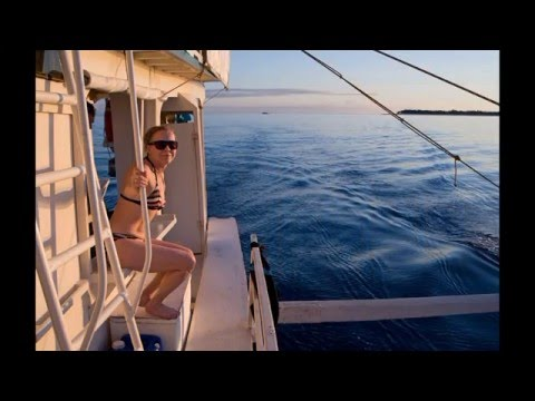 Filippinerna 2015 - Med Fantasea Diving