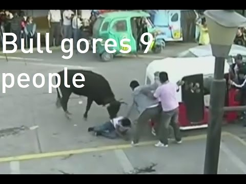 Nine people gored by bulls at religious festival in Peru