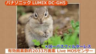 パナソニック LUMIX DC-GH5 (カメラのキタムラ動画_Panasonic)