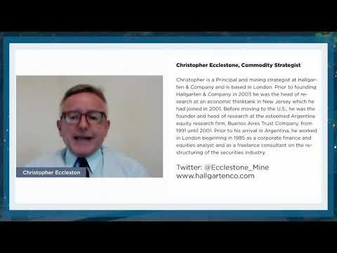 Christopher Ecclestone: The Case for Zinc