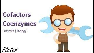 √ Cofactors and Coenzymes | Biology | iitutor