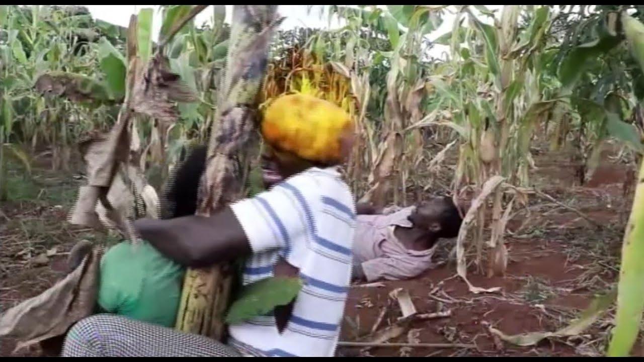 Download ABAVUBUKA BAZIKUDE OMULAMBO LWA BUGAGA MUGABA RETURNS4 VJ EMMY TRANSLATED UGANDAN MOVIES BY LUTAKOME