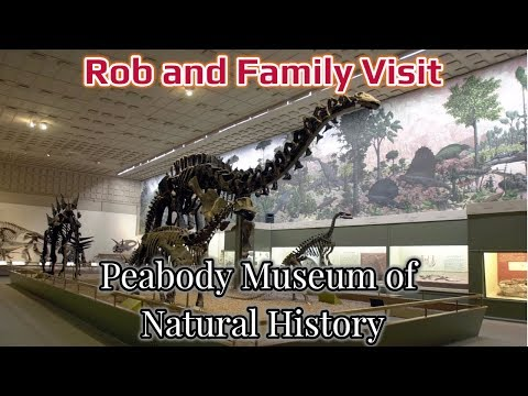 My Day with My Grandson at the Peabody Museum