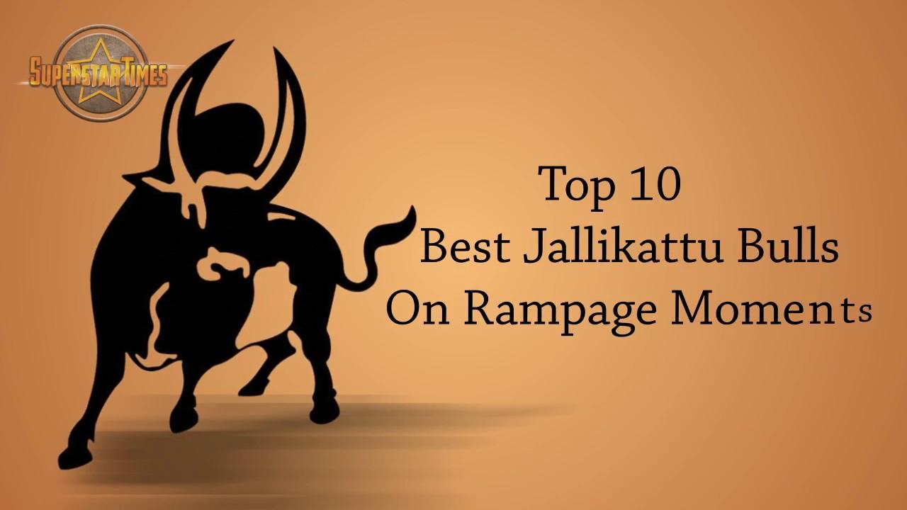 Top 10 best jallikattu bulls on rampage