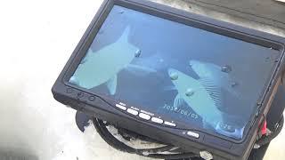 Рыбалка с подводной камерой Язь 52 Актив глубина 11 метров