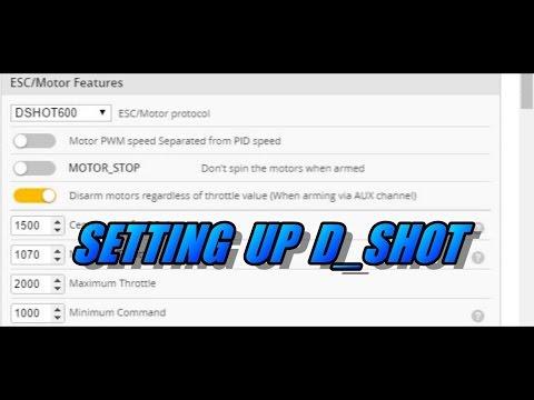 D Shot ESC Set Up In Betaflight