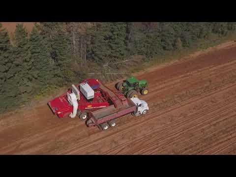 Aerial Video of Potato Harvest in PEI