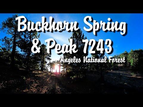 Angeles National Forest - Buckhorn Spring & Peak 7243