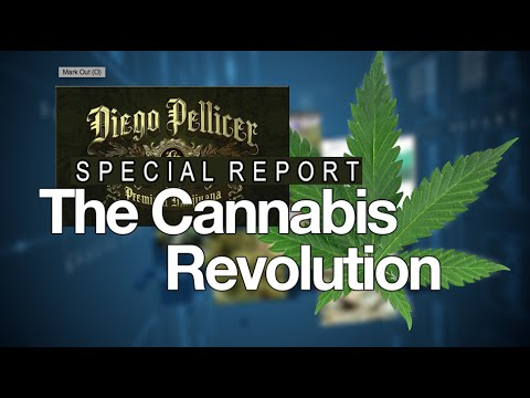 The New Billion Dollar Industry: Inside Diego Pellicer (OTCQB: DPWW)