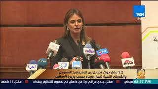 رأي عام - 1.2 مليار دولار تمويل من الصندوقين السعودي والكويتي لتنمية شمال سيناء بحسب وزيرة الاستثمار