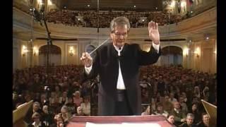 Любите ли вы Брамса Симфония 1