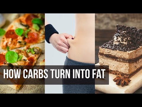how-carbs-turn-to-fat:-weight-loss-secret--thomas-delauer