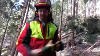Cool Forestry Trick - Lifehack for Logging Worker - Sliding Trees