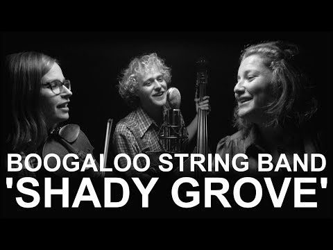 Boogaloo String Band 'Shady Grove'
