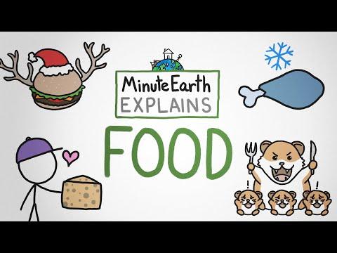 MinuteEarth Explains: Food