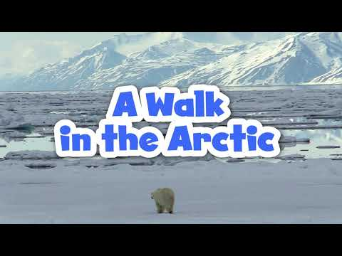 A Walk in the Arctic for Kids | Educational Video for Early Learners