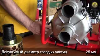 Мотопомпа FUBAG PG900T(, 2013-04-05T14:00:27.000Z)