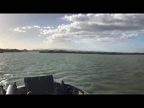 Video de Guantánamo