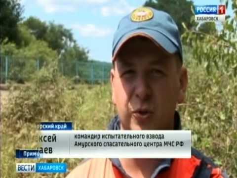 Сотрудников ГИБДД в Хабаровске приговорили к
