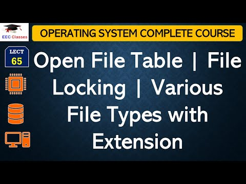 Open File Table | File Locking | Various File Types with Extension