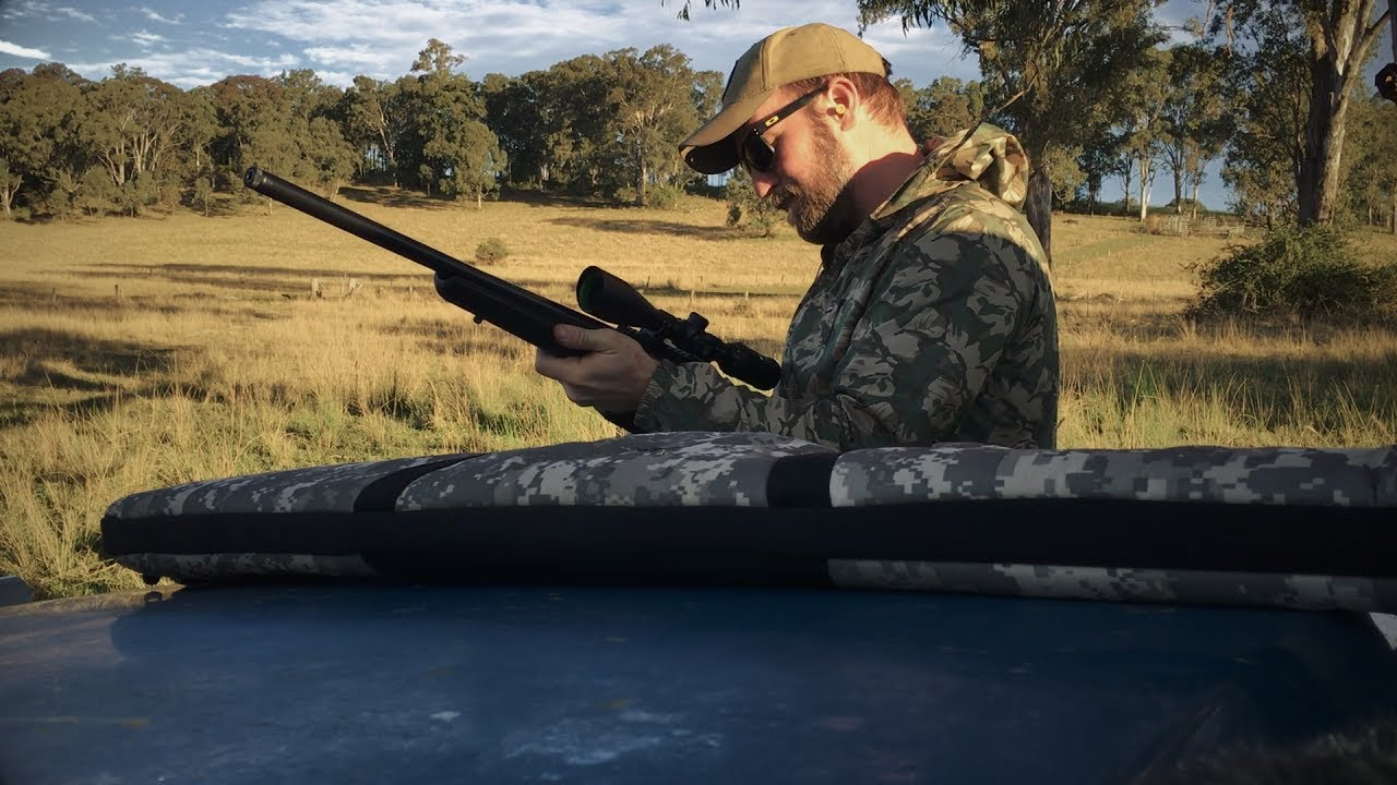 Tikka t3 rifles provide a two-stage trigger, two-locking lug t3 bolt, t3 truebody stock, single-column detachable clip. Tikka t3 forest. 308 win rifle jrtf616.